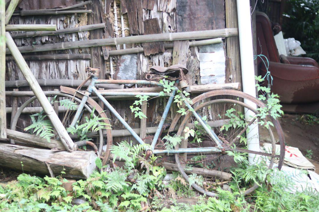 納屋の自転車